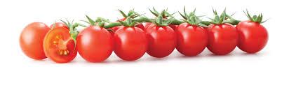 Способы дозревания томатов помидоров Дозаривание