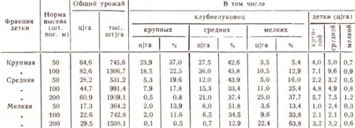 """Таблица """"Урожай гладиолусов и его качество"""""""