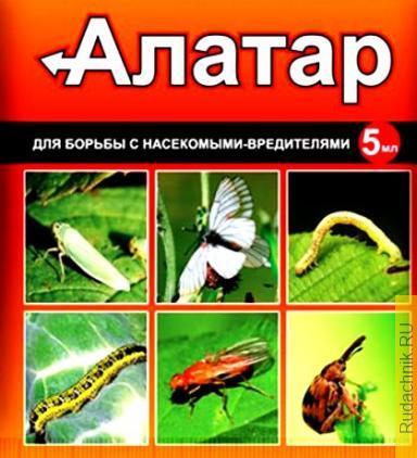 Препарат «Алатар» для капусты