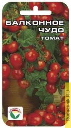 Хочу посадить томаты сорта «Балконное чудо» и «Ляна» на подоконник