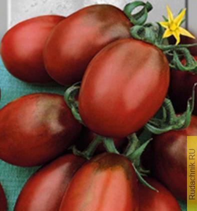 Де Барао - сорт томатов с плодами черного оттенка, фото.
