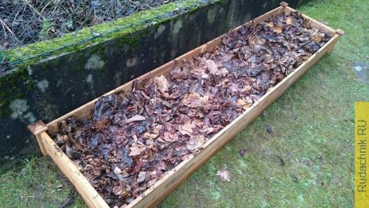 Грядка, покрытая листвой, в качестве защиты от мороза.