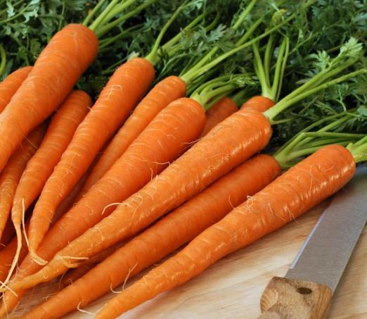 Как вырастить морковь к июню