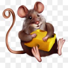 Замучили мыши, погрызли всю свёклу на грядке, добрались до огурцов, я не подумавши разбросала отраву по грядкам