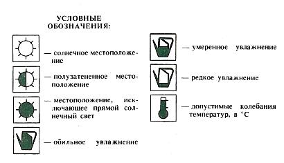 Условные обозначения для комнатных растений.