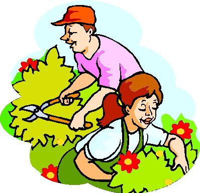 Как правильно обрезать ветки у садовых деревьев.