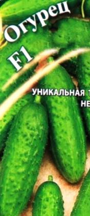 Проверенные урожайные гибриды огурца