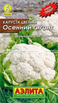 Сорта цветной капусты: Осенний гигант или Коза-дереза