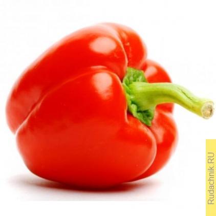 Хороший урожай перца. Что нужно делать, чтобы был большой урожай перцев.