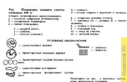 planirovka_sadovogo_uchastka.jpg
