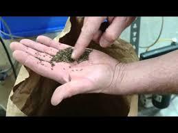 О системе содержания почвы в садах.