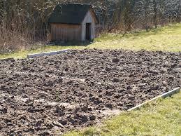 Подготовка почвы под помидоры
