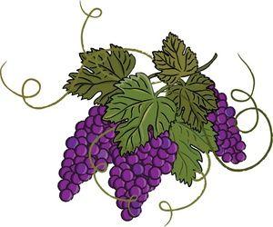 На винограде зелёные жуки, как с ними бороться?