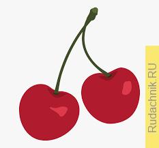 У вишни стали желтеть листья и прожилки на листочках, что это за болезнь?