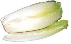 Салатный цикорий