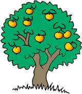 Как использовать мочевину для удобрения плодовых деревьев.