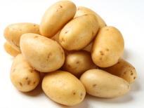 Вирусные заболевания картофеля.