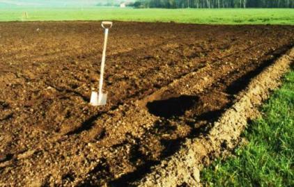 На фото - почва под картофель.
