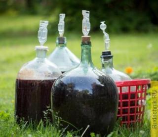 Можно ли вино из ягод разных сроков перелить в одну тару?