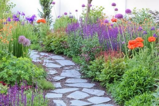Сад в июне