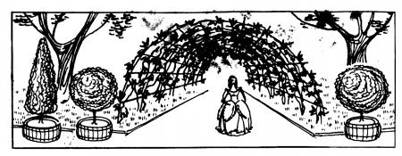 интересные страницы истории одного на шедевров русского садово-паркового искусства — Летнего сада в С-Петерсбурге