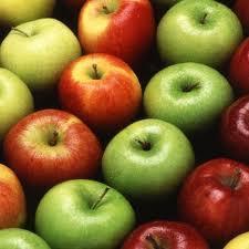 Летние сорта яблонь. Описание летних сортов яблонь.