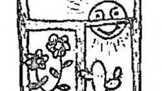 Лето в жизни комнатных растений