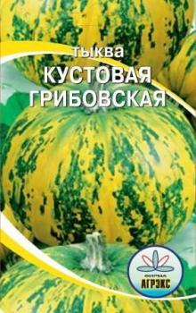 Сорт тыквы Грибовская кустовая изображение